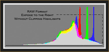 Optimum RGB Histogram in RAW Format (Sample)