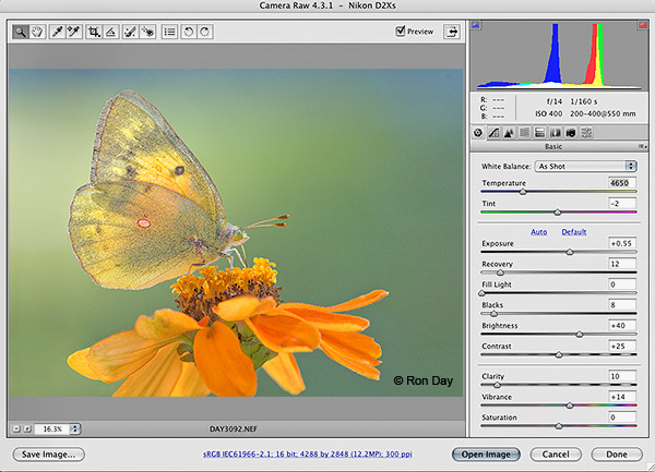 Adobe Camera RAW 4.3.1 Interface, Photoshop CS3